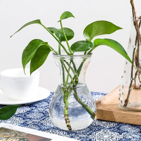 花瓶花器風信子透明玻璃水培容器水仙花瓶玻璃花盆水培瓶插植物器皿養花 多色小屋