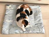 手工夏季冰絲貓咪窩用清爽透氣寵物墊子Dhh5187【潘小丫女鞋】
