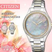 【公司貨保固】CITIZEN 星辰表 Eco-Drive 光動能 34mm 水晶 女錶 EO1184-81D