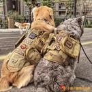 大狗胸背牽引繩狗鏈子中大型犬背帶胸帶狗繩【小獅子】