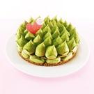 【Kiseki-Bakery】8吋兩層抹...