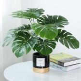 仿真植物裝飾創意小擺件客廳桌面盆栽家居室內假綠植盆景 QW6131『夢幻家居』