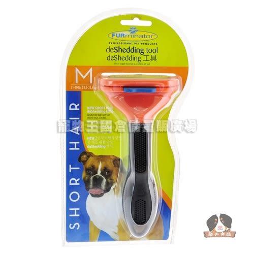 【寵物王國】美國FURminator神效專利去毛梳-短毛中型犬專用(M)