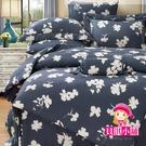 【貝淇小舖】 100%萊賽爾天絲 特大雙人6x7尺 鋪棉兩用被床包組 附正天絲吊卡 韻香-藍