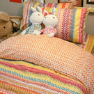 吃一口彩虹  D2 雙人床包雙人薄被套四...