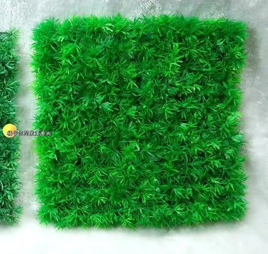 金魚草假草皮.人造草皮.牆壁裝飾草皮.仿真草皮.室外腳踏墊 [ 約25*25cm ]