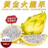 【果農直配-全省免運】台灣黃金火龍果10斤±10%(16-22入)
