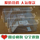 折疊式捕貓籠/松鼠籠L號YG-203