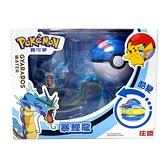 精靈寶可夢 Pokemon 變形系列 暴鯉龍 超級球 酷變 庄臣 正體中文代理版 TOYeGO 玩具e哥