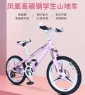 自行車 越野變速單車雙碟剎減震青少年學生車男女式賽車