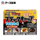 日本 興家安速 蟑螂餌劑 2gx12入 小黑帽 蟑螂藥 蟑螂 滅蟑 殺蟑 滅蟑利器 小強剋星