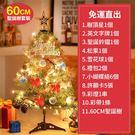 24H現貨 聖誕樹 60公分松針聖誕樹套...