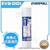水達人~愛惠浦科技EVERPOLL 溝槽式抗菌濾芯(EVB-D101)