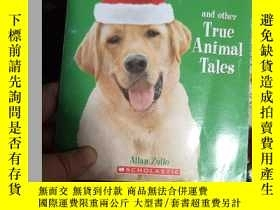 二手書博民逛書店The罕見Dog Who Saved ChristmasY153