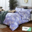 雙人 152x188cm 頂級100%天絲 40s400針紗 床包四件組(兩用被套)-雲朵 【金大器】