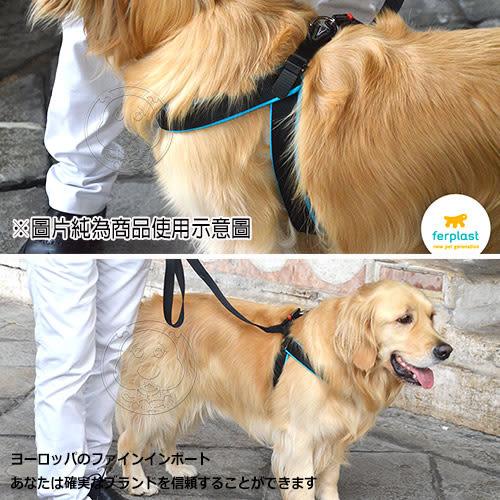 【zoo寵物商城】義大利ferplast飛寶》Agila Fluo愛吉拉胸背帶2型胸圍33~45