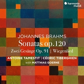 【停看聽音響唱片】【CD】布拉姆斯:中提琴奏鳴曲、搖籃曲 / 塔梅斯提 中提琴