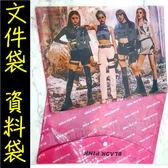 BLACKPINK 文件夾 PVC文件袋 L夾 A4文件套E864-4【玩之內】韓國JISSCO JENNIE LISA