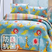 【鴻宇HONGYEW】美國棉/防蹣抗菌寢具/台灣製/雙人四件式薄被套床包組-183608