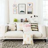 時尚簡約實用抱枕280  靠墊 沙發裝飾靠枕
