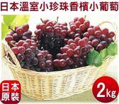 【果之蔬-全省免運】日本溫室珍珠葡萄【原裝2kg±10%/約12-17串】【御葡萄】