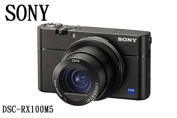 展示出清!Sony DSC-RX100V RX100M5 相機 ★贈電池(共2顆)+32G高速卡+座充+吹球清潔組+保護貼