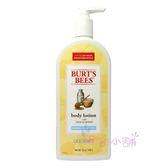 Burt s bees 蜜蜂爺爺-蜂蜜歐蕾保濕身體乳12oz(340g) 美國進口 【彤彤小舖】