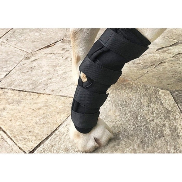 【🐱🐶培菓寵物48H出貨🐰🐹】熱銷狗護腿套寵物關節炎固定恢復綁帶包裹腿部支架保護套
