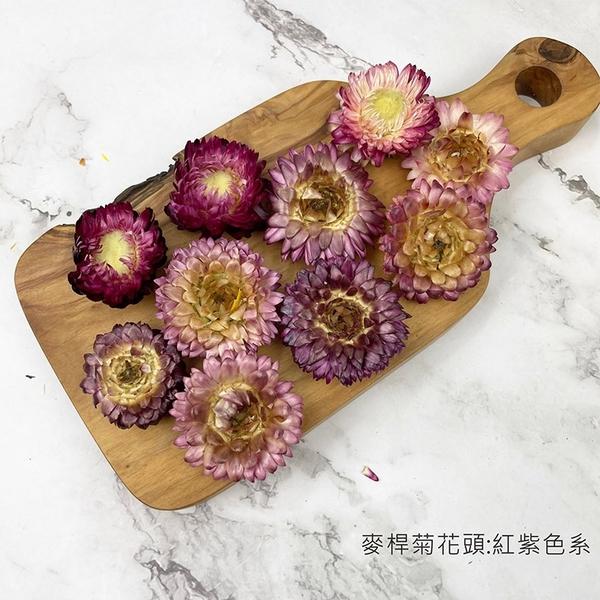 3-5CM 麥桿菊花頭-乾燥花圈 乾燥花束 浮游花 拍照道具 手作素材 乾燥花材-4元/朵-10送1