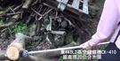 【東林電子台南經銷商】東林BLDC鏈鋸機...