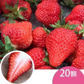 天藍果園-大湖草莓(20顆)含運組