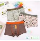 BabyPark 韓國男孩四角褲-森林小熊 內褲 兒童內褲 平角褲