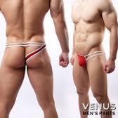 情趣用品 男用三角內褲VENUS 網紗性感情趣 單邊褲 一字 紅