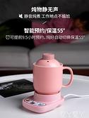 養生壺辦公室小型多功能mini煮茶器家用電熱迷你花茶養身壺1人用220V