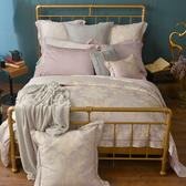 法國CASA BELLE《羅浮納》特大天絲刺繡四件式防蹣抗菌吸濕排汗兩用被床包組