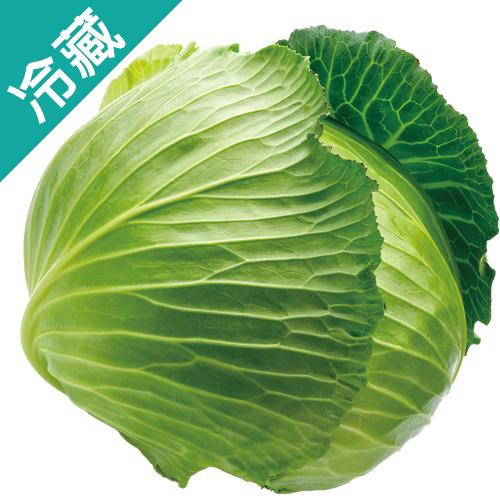 雪翠高麗菜1.2KG/粒【愛買冷藏】