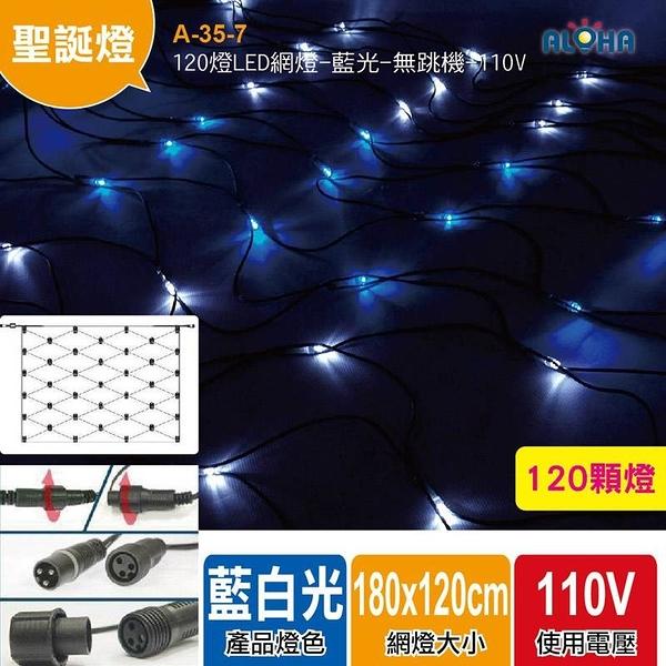 聖誕燈飾 120燈LED網燈/藍白光 無跳機帶尾插 A-35-7