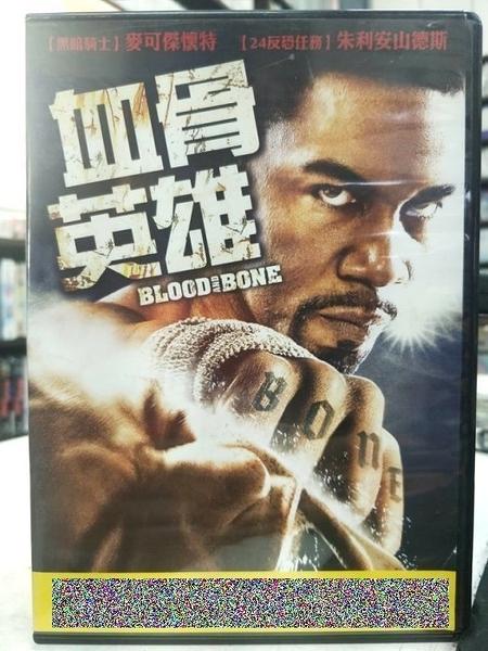 挖寶二手片-G05-049-正版DVD-電影【血骨英雄】-麥可傑懷特 朱利安山德斯(直購價)