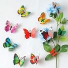 CARMO超美仿真蝴蝶冰箱貼/微景觀(單入) 居家裝飾【A0UP014】