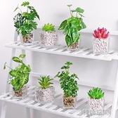 假花塑料花干花仿真花客廳餐桌擺件花束裝飾品綠植植物小盆栽擺設