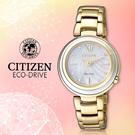 CITIZEN 星辰手錶專賣店 EM0336-59D 女錶 Eco-Drive光動能 日系 不鏽鋼錶殼錶帶 金 珍珠母貝面盤
