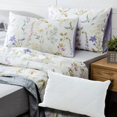 (組)黛希木棉絲涼被三件組+淨睡眠長效防螨抗菌支撐型枕