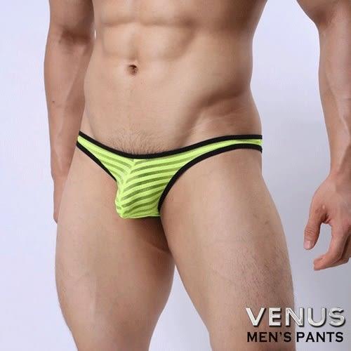 情趣內褲 性感丁字褲 情趣用品 角色扮演 C字褲 同志 猛男 VENUS 低腰性感 透明 囊袋款 三角褲 黃