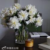 花瓶 透明玻璃花瓶/花器。中號,日常經典款 igo辛瑞拉