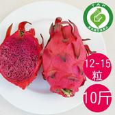 (產銷履歷)陳家火龍果-紅肉10台斤/箱 (12-15粒)