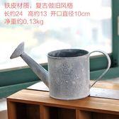 [超豐國際]復古灑水壺模型花藝鐵桶 鐵藝花桶裝飾品擺件 花鳥1入