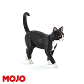 【Mojo Fun 動物星球】家庭動物-貓 387200