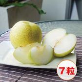 【鮮食優多】預購★花蓮壽豐・果艷梨 7 粒裝禮盒