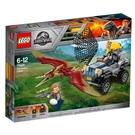 LEGO樂高 侏儸紀世界 Pterano...