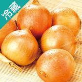 【產銷履歷】鮮甜洋蔥1KG/袋【愛買冷藏】